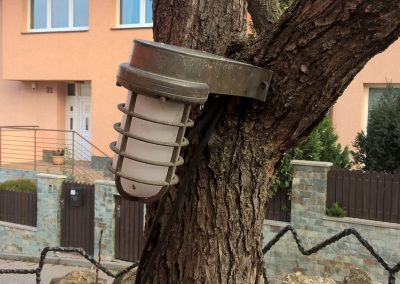 Nasvietenie stromu
